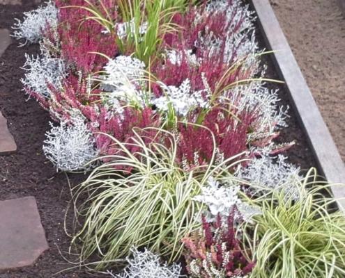 Gärtnerei Kiesewetter - Grabpflege bunte Herbstpflanzung
