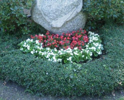 Gärtnerei Kiesewetter - Grabpflege Rundbeet mit Begonien