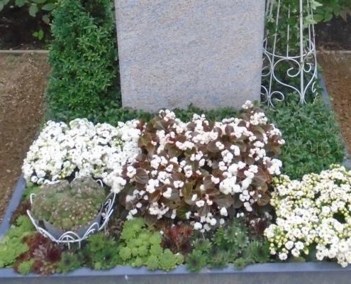 Gärtnerei Kiesewetter - Grabpflege Urne Sommer