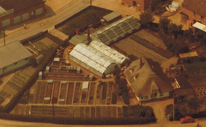 Gärtnerei Kiesewetter 1971